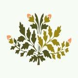 Vector завод иллюстрации симметричный зацветая с цветками и лист Стоковое Изображение RF