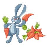 Vector зайчик шаржа с 2 морковами в лапках стоя рядом с пуком морковей Стоковое Изображение