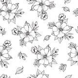 Vector иллюстрация, безшовная черно-белая картина с цветением плодоовощ, яблоком, грушей, оранжевыми цветками нарисованными с таб иллюстрация штока