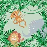 Vector иллюстрация джунглей, ветвей, смертной казни через повешение обезьяны на лианах, льва и слона на зеленой предпосылке иллюстрация штока