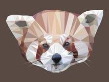 Vector иллюстрация низкого поли портрета красной панды Стоковые Фото
