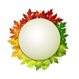 Vector листья осени знамени и colorul, дизайн карточки бесплатная иллюстрация