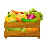 Vector иллюстрация деревянной коробки с овощами на белой предпосылке Стоковая Фотография