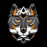 Vector иллюстрация нарисованная рукой волка с декоративными элементами Стоковые Фото