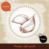 Vector иллюстрация нарисованная рукой с гвоздичным деревом чеснока специи на предпосылке grunge старой Иллюстрация штока