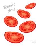 Vector иллюстрация падая кусков томата изолированных на белой предпосылке Отрезок звенит свежих зрелых овощей Стоковое Изображение RF