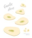 Vector иллюстрация падая кусков чеснока изолированных на белой предпосылке Отрезок звенит свежих зрелых овощей Стоковое Изображение