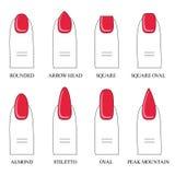 Vector иллюстрация, различные формы, формы ногтей Маникюр Стоковые Изображения RF
