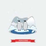 Vector иллюстрация смешных пингвинов на ледовитом леднике Стоковые Фотографии RF
