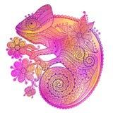 Vector иллюстрация хамелеона радуги и декоративных картин Стоковая Фотография RF