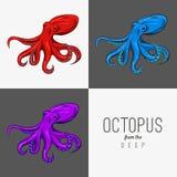 Vector иллюстрация чертежа осьминога с завивая щупальцами план, 3 цвета Шаблон плаката, логотип, плакат, меню Стоковое Изображение