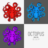 Vector иллюстрация чертежа осьминога с завивая щупальцами Стоковые Фото
