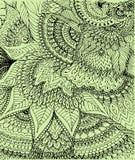 Vector иллюстрация чертежа doodle на салатовой предпосылке Стоковая Фотография RF