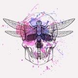 Vector иллюстрация grunge человеческих черепа и dragonfly Стоковые Изображения RF