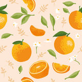 Vector картина лета с апельсинами, цветками и листьями Безшовный дизайн текстуры Стоковые Изображения RF