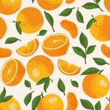 Vector картина лета с апельсинами, цветками и листьями Безшовный дизайн текстуры Стоковое Изображение