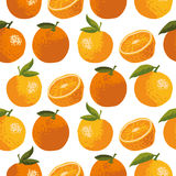 Vector картина лета с апельсинами, цветками и листьями Безшовный дизайн текстуры Стоковые Фото