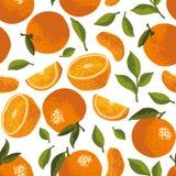 Vector картина лета с апельсинами, цветками и листьями Безшовный дизайн текстуры Стоковые Фотографии RF