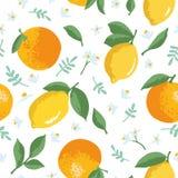 Vector картина лета с лимонами, апельсинами, цветками и листьями Стоковое Фото