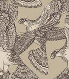 Vector картина нарисованная рукой безшовная с декоративными орлами Стоковые Фото
