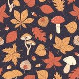 Vector картина осени безшовная с дубом, тополем, буком, листьями клена и осины, грибами, жолудями и физалисом на темной предпосыл иллюстрация вектора