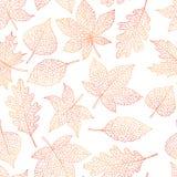 Vector картина осени безшовная с планом листьев дуба, тополя, бука, клена, осины и конского каштана на белой предпосылке иллюстрация штока