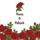 Vector карточка с белизной сада и красными розами и цветками тюльпана на белой предпосылке Романтичный дизайн для естественных ко Стоковая Фотография RF