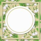 Vector карточка с круглыми картинами цветков snowdrop Стоковые Изображения