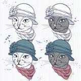 Vector комплект цвета элегантной стороны женщин кота Стоковое Изображение