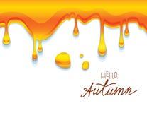 Vector красочная иллюстрация липкого янтарного меда с здравствуйте! надписью осени Стоковые Фотографии RF