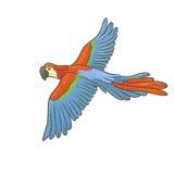 Vector красочный текстурированный эскиз нарисованный вручную попугая на белой предпосылке Яркая экзотическая тропическая ара летя Стоковое Изображение RF