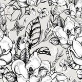 Vector листья лета тропические, экзотическая поздравительная открытка Стоковые Изображения