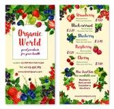 Vector меню цены для ягод и плодоовощей сада Стоковое фото RF