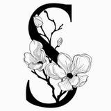 Vector нарисованные рукой флористические вензель и логотип uppercase s Стоковая Фотография