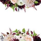 Vector пинк Роза бургундское Dahli дизайна карточки квадрата флористического дизайна Стоковое Изображение