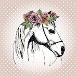 Vector портрет нарисованный рукой лошади нося флористическую крону Стоковая Фотография