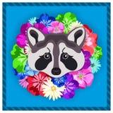 Vector портрет серого енота среди цветков Красивые, яркие цвета Рамка цветка, оправа Симметричные портреты животных Стоковое Изображение RF