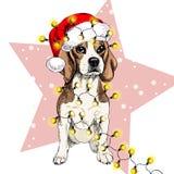 Vector портрет собаки бигля нося гирлянду светов рождества шляпы santa Изолированный на звезде и снеге Цвет Skecthed Стоковое фото RF