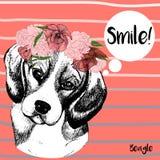 Vector портрет собаки бигля, с венком Нарисованная рукой иллюстрация собаки Стоковые Фотографии RF