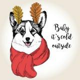 Vector портрет собаки в ушах шарфа и лист Нарисованная рукой иллюстрация собаки Младенец оно холод s снаружи Стоковые Фотографии RF