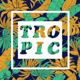 Vector предпосылка с тропическими заводами и цветками на темной предпосылке Стоковая Фотография