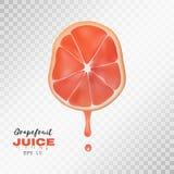 Vector реалистический отрезанный грейпфрут с падением сока предпосылка прозрачная Стоковые Изображения