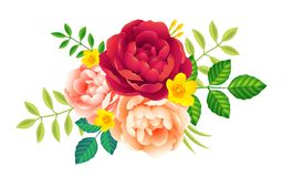 Vector розетка цветков с пионами и позеленейте листья на белой предпосылке, романтичном украшении поздравительной открытки Стоковое фото RF