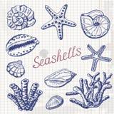 Vector собрание раковин, коралла и морских звёзд моря на бумаге Иллюстрация чертежа руки Стоковые Фотографии RF