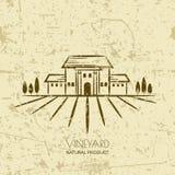 Vector старая предпосылка grunge с полями и виллой виноградника