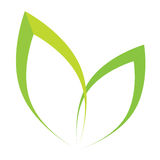 Vector стилизованный силуэт лист дерева весны изолированных на белизне Стоковая Фотография RF