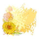 Vector угловой букет при цветок астры плана, богато украшенные листья и бутон в апельсине и желтом цвете покрашенный на пастельно иллюстрация вектора