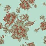 Vector флористическая безшовная картина с тюльпанами и цветками жасмина Стоковая Фотография