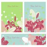 Vector флористический комплект карточки с местом для вашего текста Стоковое Фото