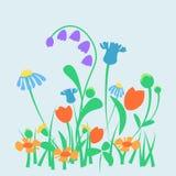 Vector цветки весны или сада или леса лета Стоковые Изображения